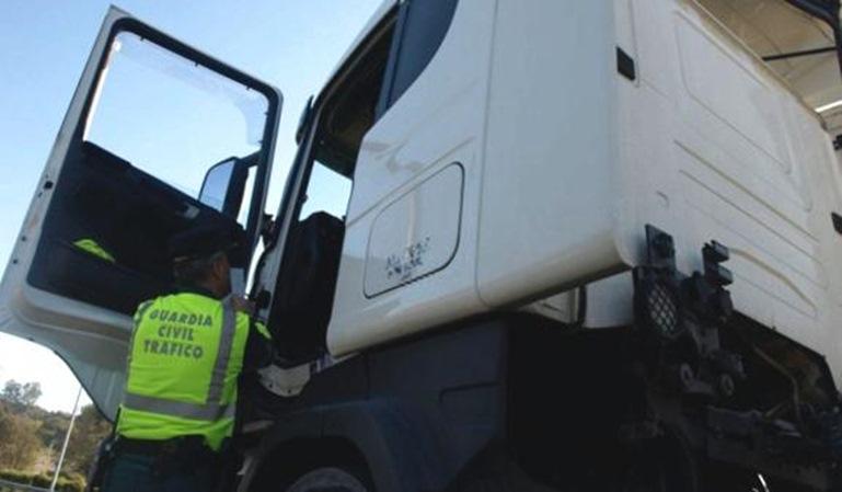 Camiones y furgonetas en el punto de mira