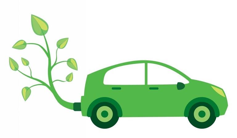 Medioambiente: cómo podemos cuidarlo