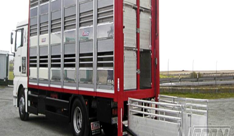 Transporte de animales: nuevas medidas publicadas en el BOE